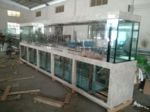 Customized Large Commercial Fish Tank pictures & photos