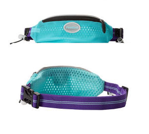 Sport Waist Bag /Running Belt pictures & photos