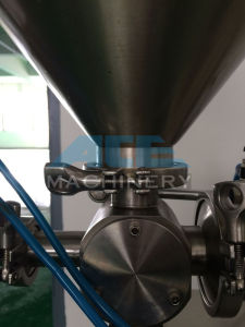 Hffs Packing Machine Line for Nuts (ACE-BZJ-V1) pictures & photos
