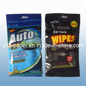 Auto Wipes Functional Wet Wipes (FW-009) pictures & photos
