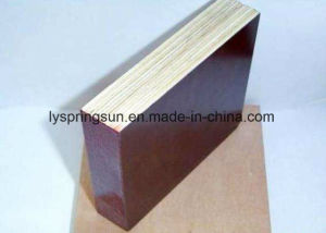Hot Selling Different Types of Filmfaced Plywood pictures & photos