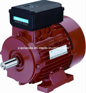 Yc Electric Motor-Induction Motor with CE Approved