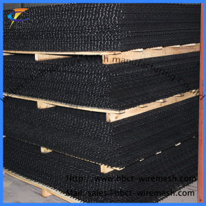 High Carbon Steel Crimped Wire Mesh of Factroy pictures & photos