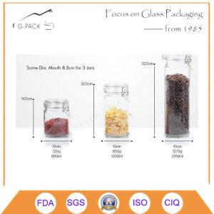 Stainless Steel Coated Glass Canister with Logo Printing pictures & photos