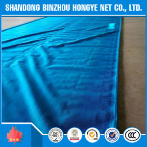 Green Scaffold Net/Construction Safety Net/Scaffold Safety Net pictures & photos