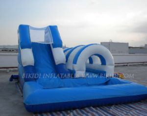 Inflatable Slide With Water Pool (B4064) pictures & photos