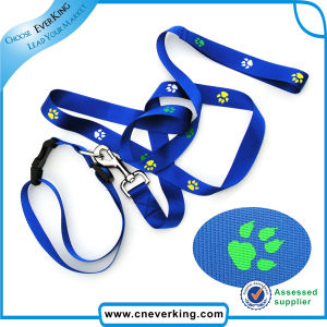 Wholesale Custom Dog Collar and Leash pictures & photos