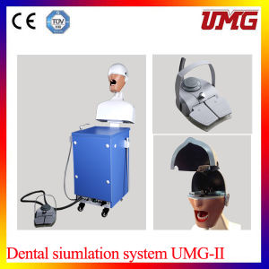 Dental Simulation Training System Dental Phantom Head pictures & photos