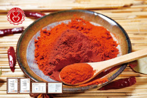 Hot Chili Powder pictures & photos