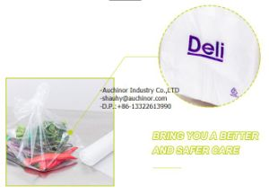 Plastic Deli Saddle Bag with Flip Top Plain pictures & photos