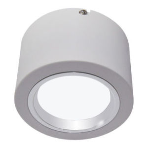 LED Dimmable 22W Down Light/Downlights/Downlight Manufacturer