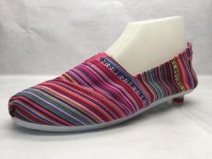 Summer Style Canvas Shoe Flat Espadrilles (23LG1705) pictures & photos