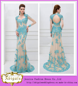 2014 New Arrival Floor Length Sheath Long Sleeve Keyhole Back Lace Ebay Evening Dresses (WD67)