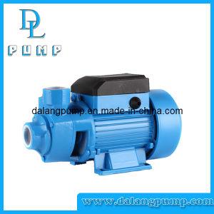 Peripheral Pump, Vortex Pump. Clean Water Pump, Garden Pump pictures & photos