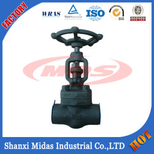 Manual Forged Steel Butt Weld Gate Valve pictures & photos