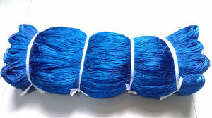 Nylon Monofilament Fishing Net/Fishing Tackle for Nigeria Market pictures & photos