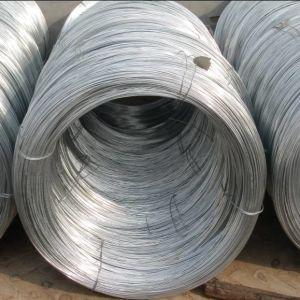 Electro Galvanized Iron Steel Wire pictures & photos