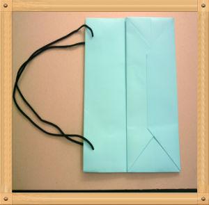 Blue Carry Bag /Paper Bag (XYCB004)