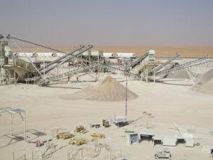Belt Conveyor - 1 pictures & photos
