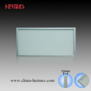 LED Panel Light 300x600x12mm 24W