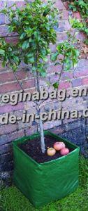 Grow Bags/Garden Planters/ Garden Bags