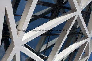 Honeycomb Panel for Decoration pictures & photos