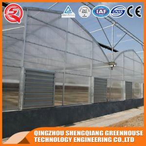 Vegetable/ Garden /Frame Indoor Growing Tent Plastic Green House pictures & photos