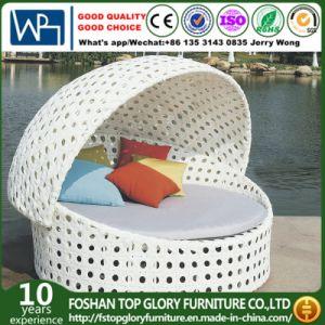 Outdoor Furniture Garden Patio Sunbed (TGLU-01) pictures & photos