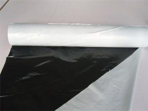 Black-White Plastic Film for Agriuclture