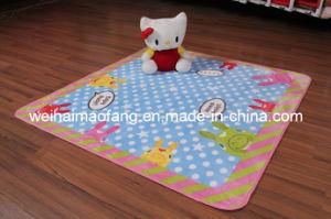 Raschel Mink Shaggy Baby Mat/Rug (NMQ-CPT0015) pictures & photos