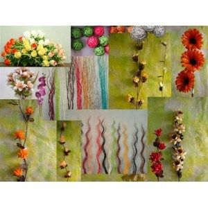 Dried Flower pictures & photos