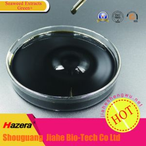 Manufacturer of 100% Soluble Compound and Organic Fertilizer of Seaweed pictures & photos