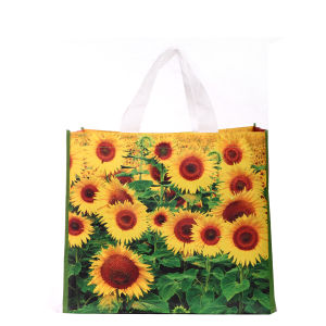 Promotional Reusable Fashion PP Woven Bag for Shopping pictures & photos