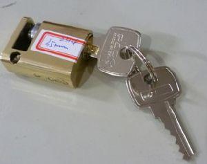 Brasil Polished Brass Cylinder (2314) pictures & photos