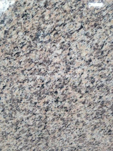 Tiger Skin Red Granite Countertop pictures & photos