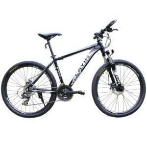 "Competitive Price 26"" *24 Speed Alloy Frame Bike pictures & photos"
