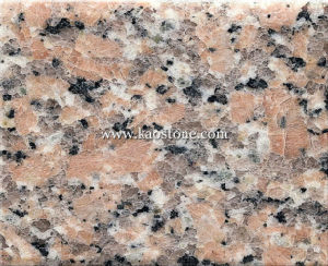 Xili Red Granite Tile /Slab (Red Granite) pictures & photos