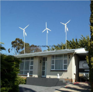 3kw off Grid Wind Power System Wind Turbine System pictures & photos