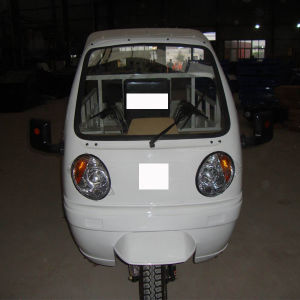 Driver Cabin Brazil Cargo Adults Moto Car pictures & photos