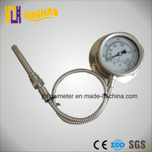 Seismic Remote Read Thermometer (JH-TM-WTZ) pictures & photos