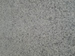 Newest and Cheapest Granite G655 From Fujian China pictures & photos
