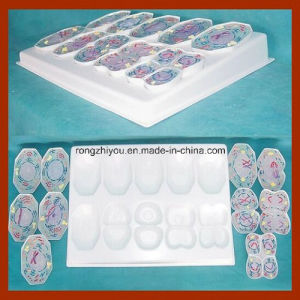 PVC Animal Cell Meiosis Model 10 PCS for Science Supplies pictures & photos