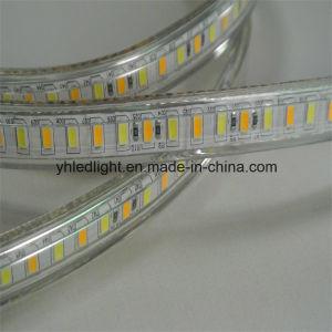 120V Color Changing 5630 LED Strip Light 3000k 4000k 6000k pictures & photos