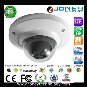 Security CCTV 1.3 Megapixel IP Camera with SD Card Slot Waterproof pictures & photos