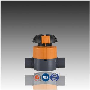 DIN ASTM JIS Standard PVC Diaphgram Valve with Socket pictures & photos