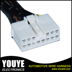 Customized Wire Harness Assembly Electric Automotive Wiring Harness and Cable Assembly pictures & photos