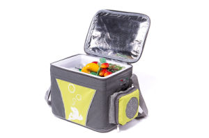 Portable Mini Fridge 4liter DC12V with Cooling and Warming for Outdoor Use pictures & photos