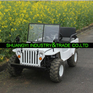 China Newest Electric ATV with 12V20A