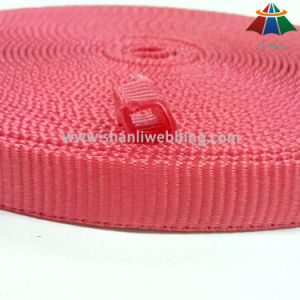 0.5 Inch Red Tubular Nylon Webbing pictures & photos