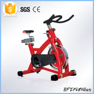 Chain Driven Cardio Master Ion Fitness Spin Bike pictures & photos